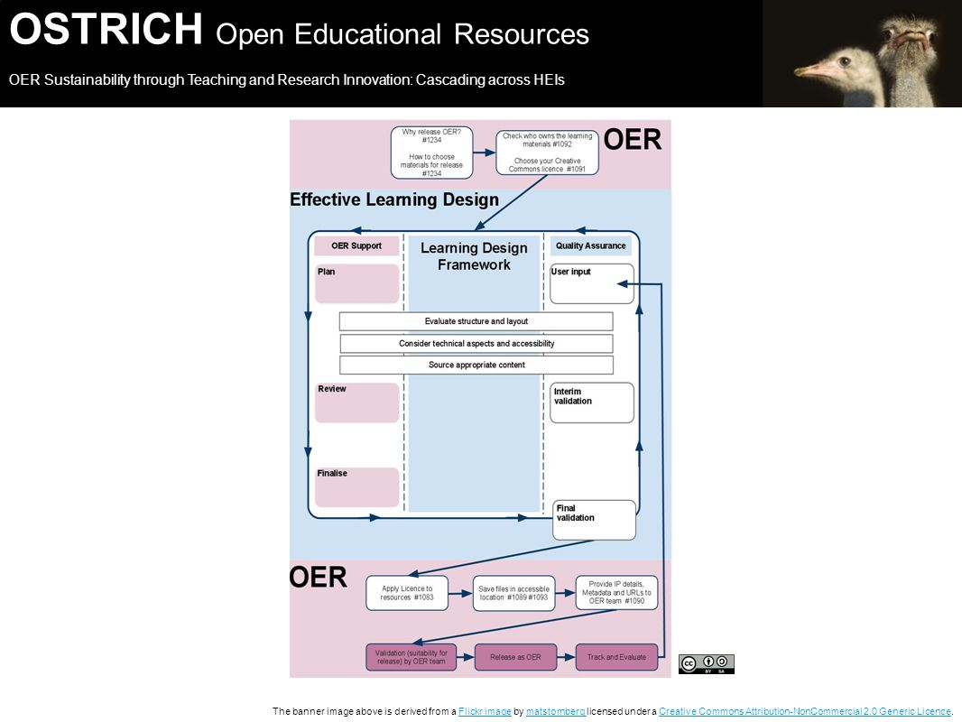 OSTRICH Open Educational Resources OER Sustainability through Teaching and Research Innovation: Cascading across HEIs The banner image above is derived from a Flickr image by matstornberg licensed under a Creative Commons Attribution-NonCommercial 2.0 Generic Licence.Flickr imagematstornberg Creative Commons Attribution-NonCommercial 2.0 Generic Licence