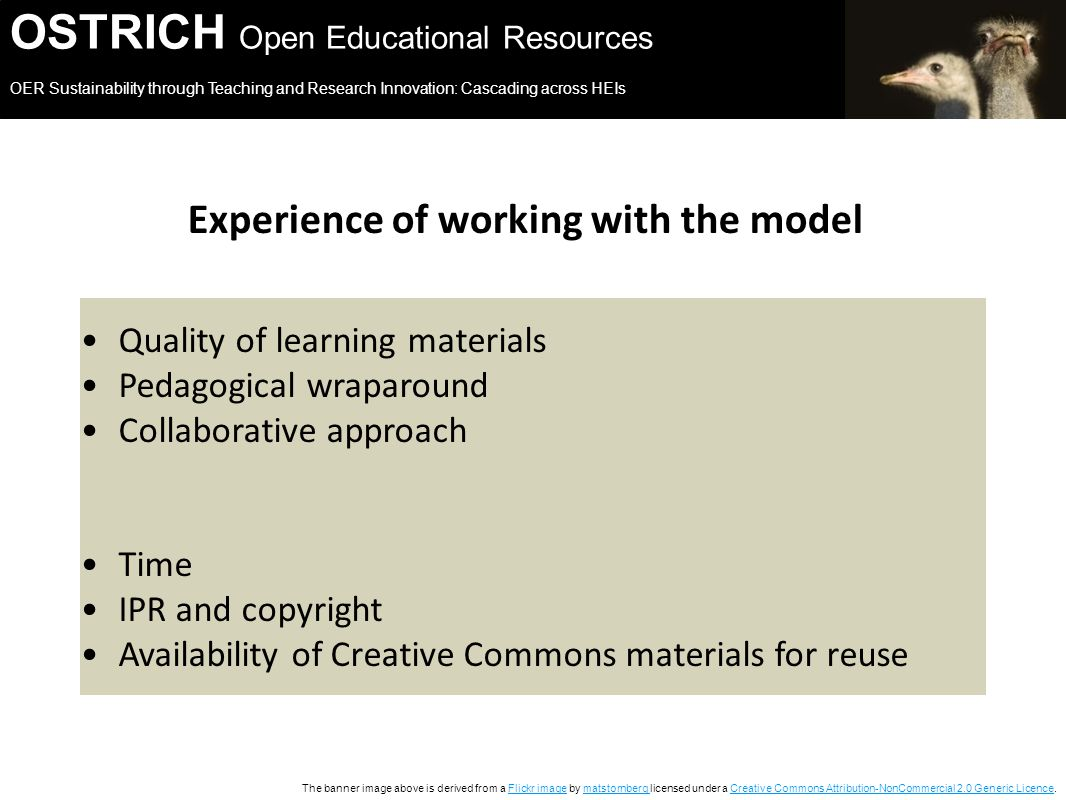 OSTRICH Open Educational Resources OER Sustainability through Teaching and Research Innovation: Cascading across HEIs The banner image above is derived from a Flickr image by matstornberg licensed under a Creative Commons Attribution-NonCommercial 2.0 Generic Licence.Flickr imagematstornberg Creative Commons Attribution-NonCommercial 2.0 Generic Licence Experience of working with the model Quality of learning materials Pedagogical wraparound Collaborative approach Time IPR and copyright Availability of Creative Commons materials for reuse