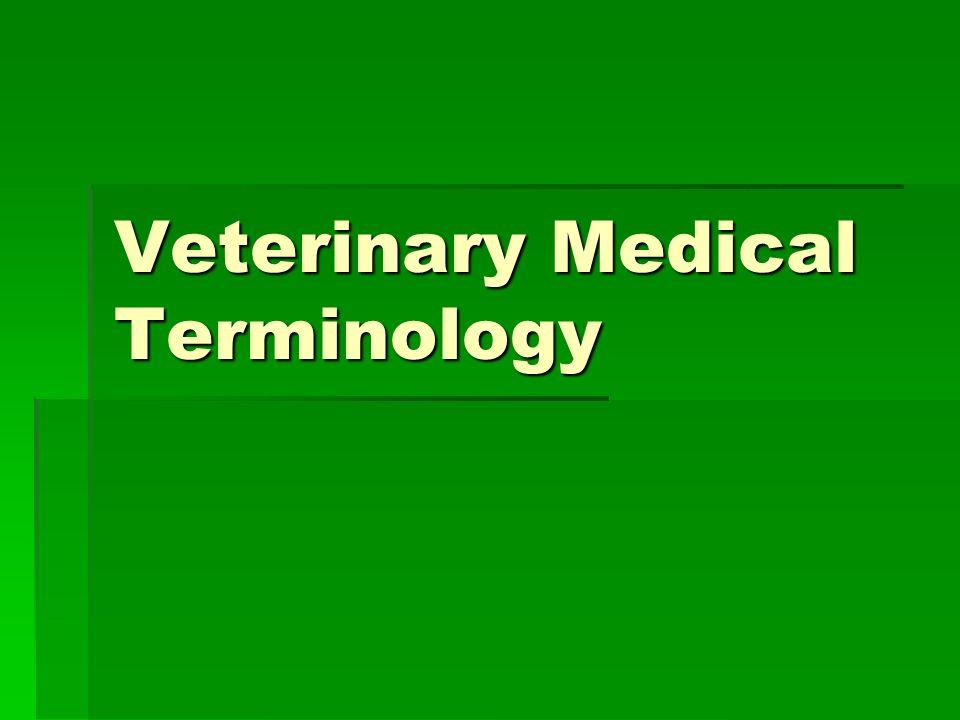 Veterinary Medical Terminology