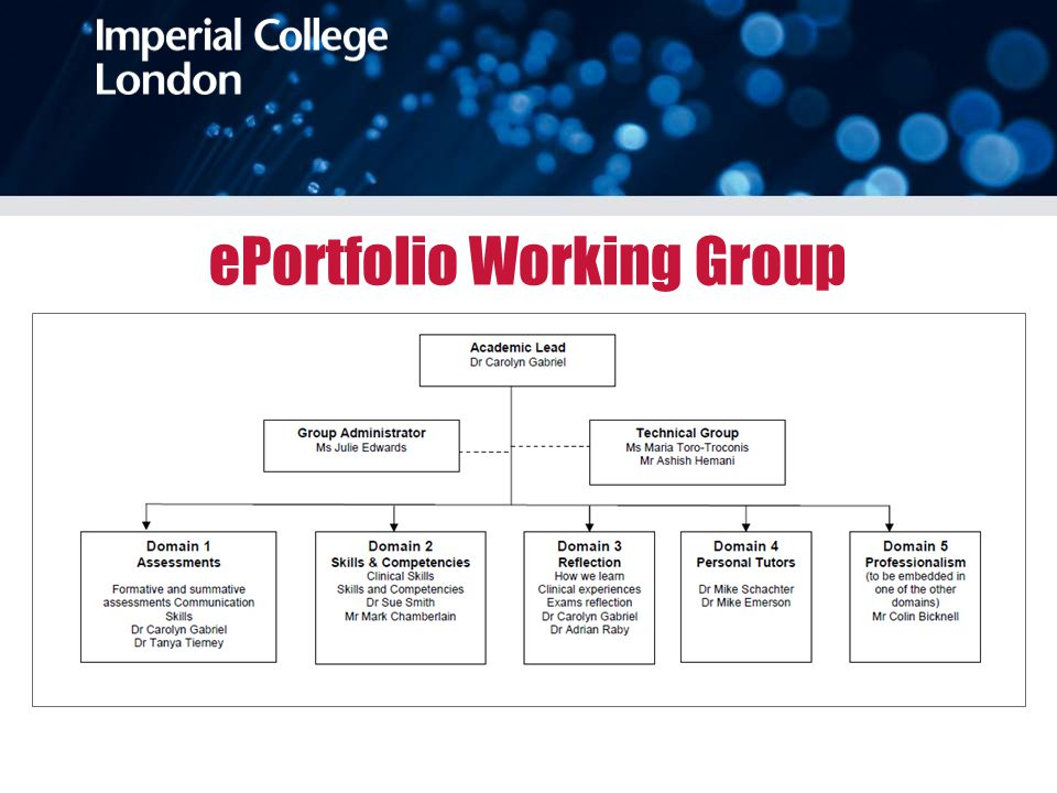 ePortfolio Working Group