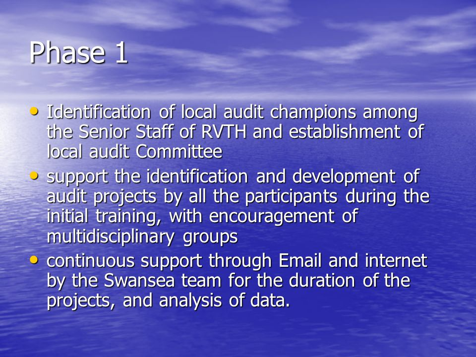 Phase 1 Identification of local audit champions among the Senior Staff of RVTH and establishment of local audit Committee Identification of local audi