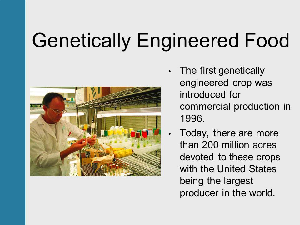 Genetically Engineered Food The first genetically engineered crop was introduced for commercial production in 1996.