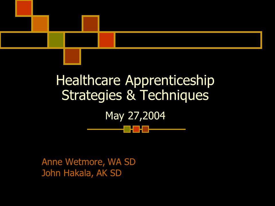 Healthcare Apprenticeship Strategies & Techniques May 27,2004 Anne Wetmore, WA SD John Hakala, AK SD