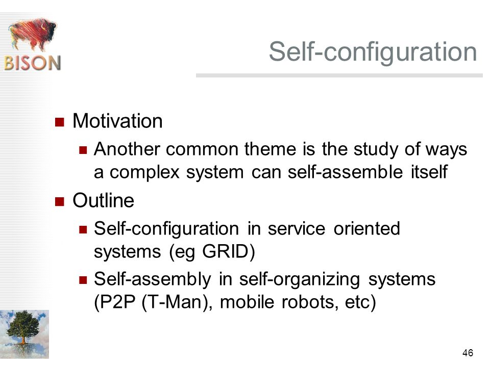 46 Self-configuration Motivation Another common theme is the study of ways a complex system can self-assemble itself Outline Self-configuration in service oriented systems (eg GRID) Self-assembly in self-organizing systems (P2P (T-Man), mobile robots, etc)
