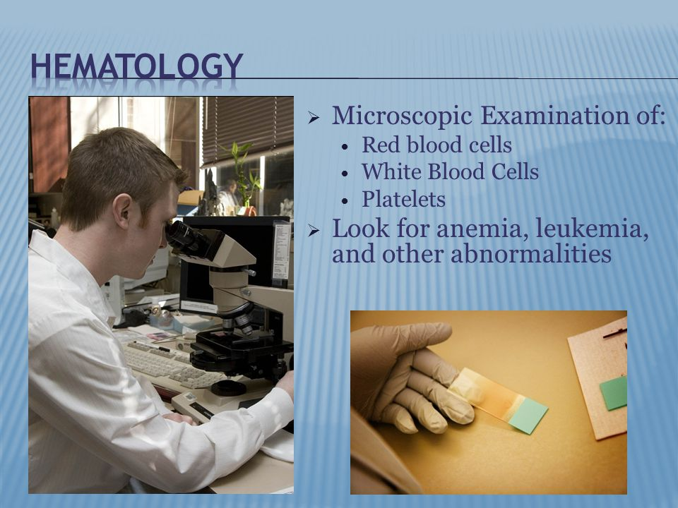  Microscopic Examination of: Red blood cells White Blood Cells Platelets  Look for anemia, leukemia, and other abnormalities