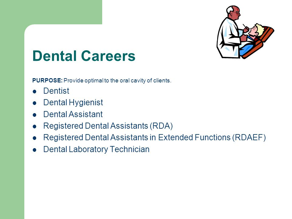 Dental Careers PURPOSE: Provide optimal to the oral cavity of clients.