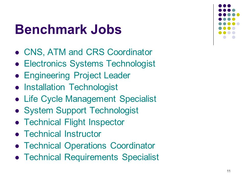 11 Benchmark Jobs CNS, ATM and CRS Coordinator Electronics Systems Technologist Engineering Project Leader Installation Technologist Life Cycle Management Specialist System Support Technologist Technical Flight Inspector Technical Instructor Technical Operations Coordinator Technical Requirements Specialist