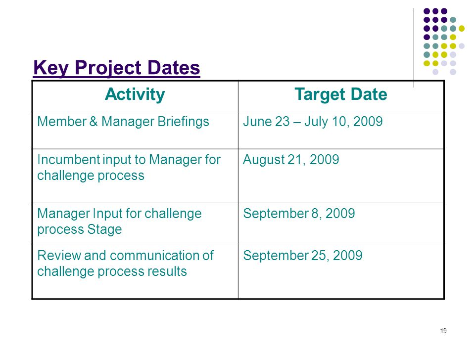 19 Key Project Dates ActivityTarget Date Member & Manager BriefingsJune 23 – July 10, 2009 Incumbent input to Manager for challenge process August 21, 2009 Manager Input for challenge process Stage September 8, 2009 Review and communication of challenge process results September 25, 2009