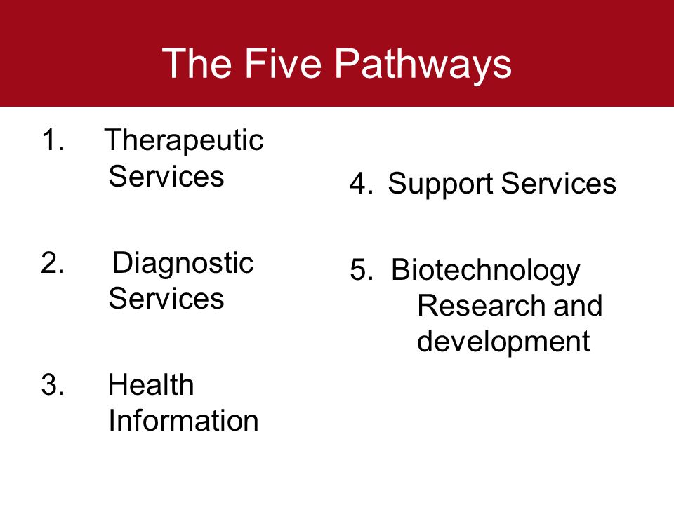 The Five Pathways 1. Therapeutic Services 2. Diagnostic Services 3. Health Information 4.Support Services 5. Biotechnology Research and development