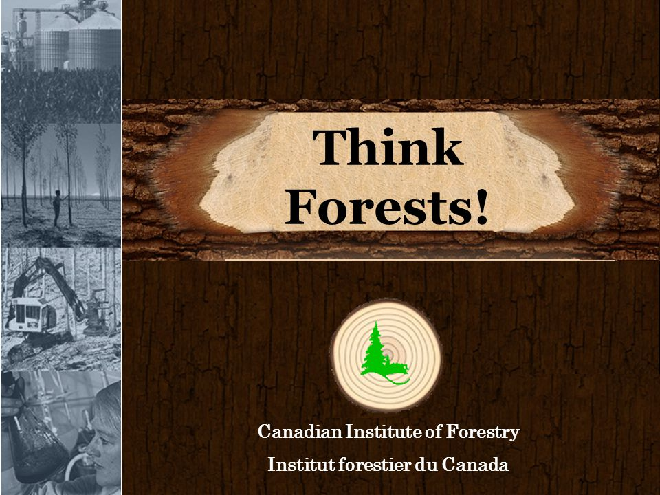 Think Forests! Canadian Institute of Forestry Institut forestier du Canada