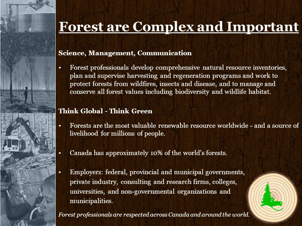 Forest are Complex and Important Science, Management, Communication Forest professionals develop comprehensive natural resource inventories, plan and supervise harvesting and regeneration programs and work to protect forests from wildfires, insects and disease, and to manage and conserve all forest values including biodiversity and wildlife habitat.