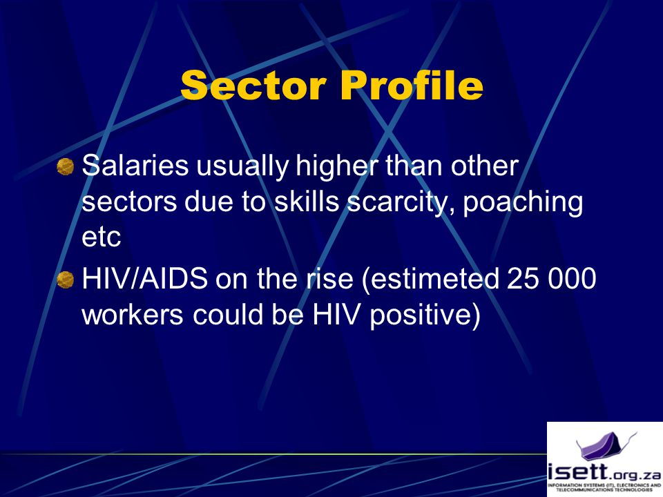Sector Profile Salaries usually higher than other sectors due to skills scarcity, poaching etc HIV/AIDS on the rise (estimeted 25 000 workers could be HIV positive)