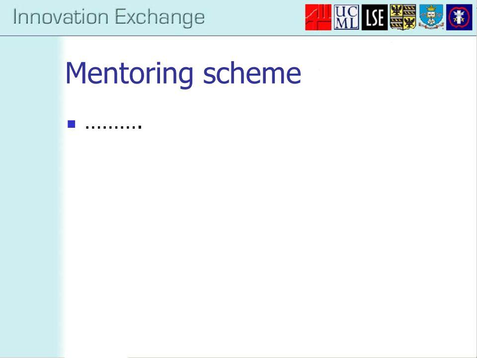 Mentoring scheme ……….