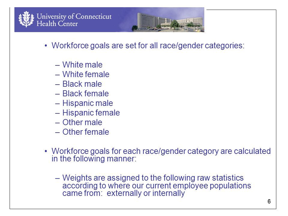 6 Workforce goals are set for all race/gender categories: –White male –White female –Black male –Black female –Hispanic male –Hispanic female –Other male –Other female Workforce goals for each race/gender category are calculated in the following manner: –Weights are assigned to the following raw statistics according to where our current employee populations came from: externally or internally