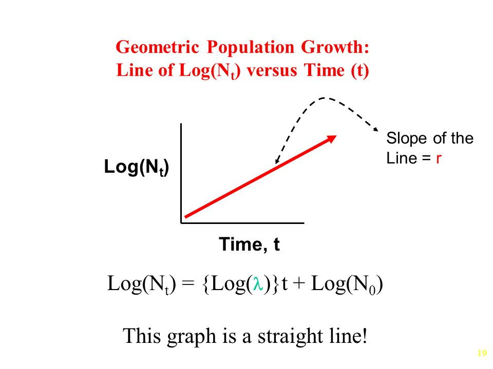 19 Geometric Population Growth: Line of Log(N t ) versus Time (t) Time, t Log(N t ) Log(N t ) = {Log( )}t + Log(N 0 ) This graph is a straight line.