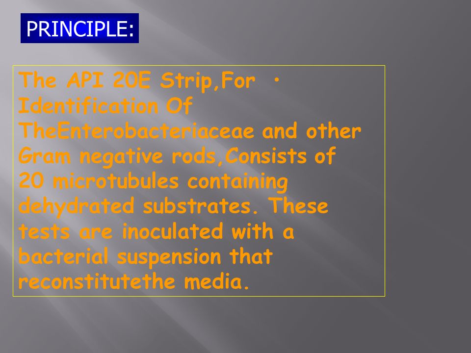 PRINCIPLE: The API 20E Strip,For Identification Of TheEnterobacteriaceae and other Gram negative rods,Consists of 20 microtubules containing dehydrated substrates.