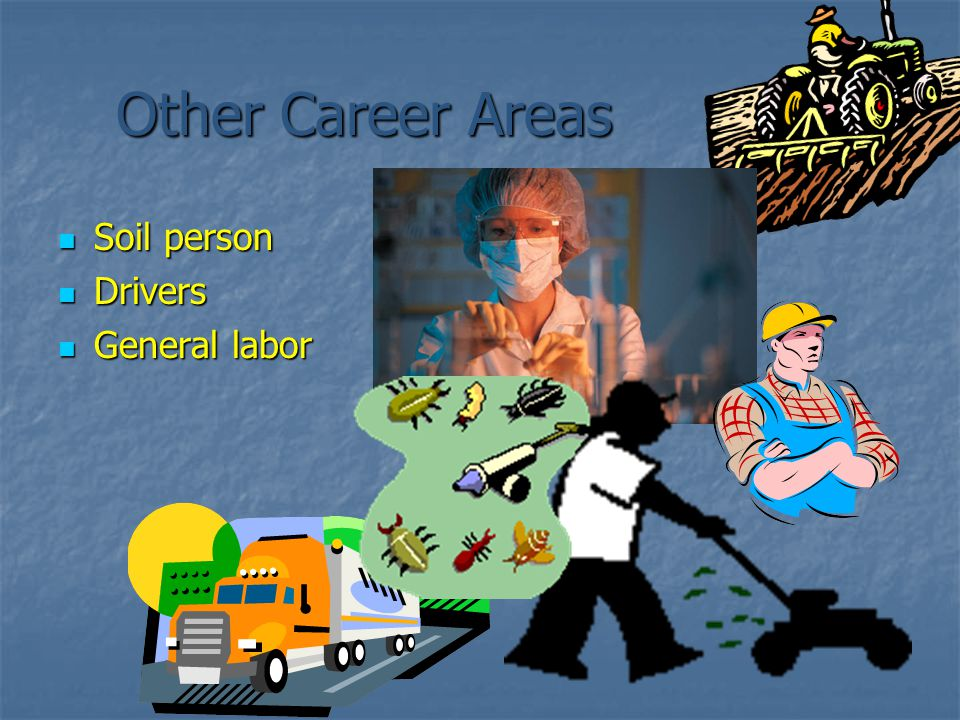 Other Career Areas Soil person Soil person Drivers Drivers General labor General labor