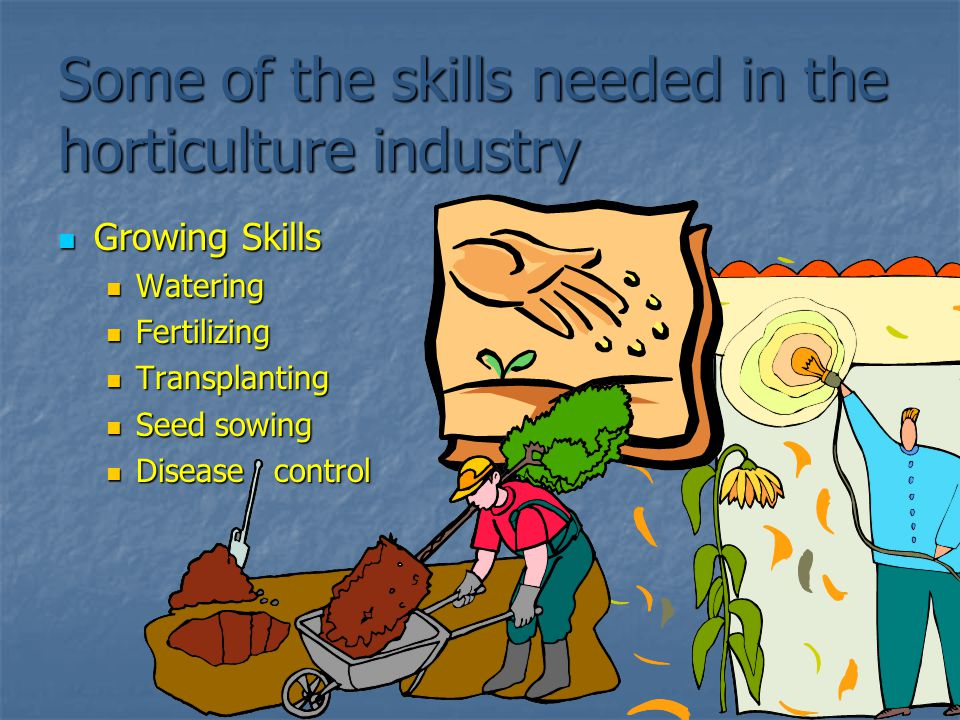 Some of the skills needed in the horticulture industry Growing Skills Growing Skills Watering Watering Fertilizing Fertilizing Transplanting Transplan