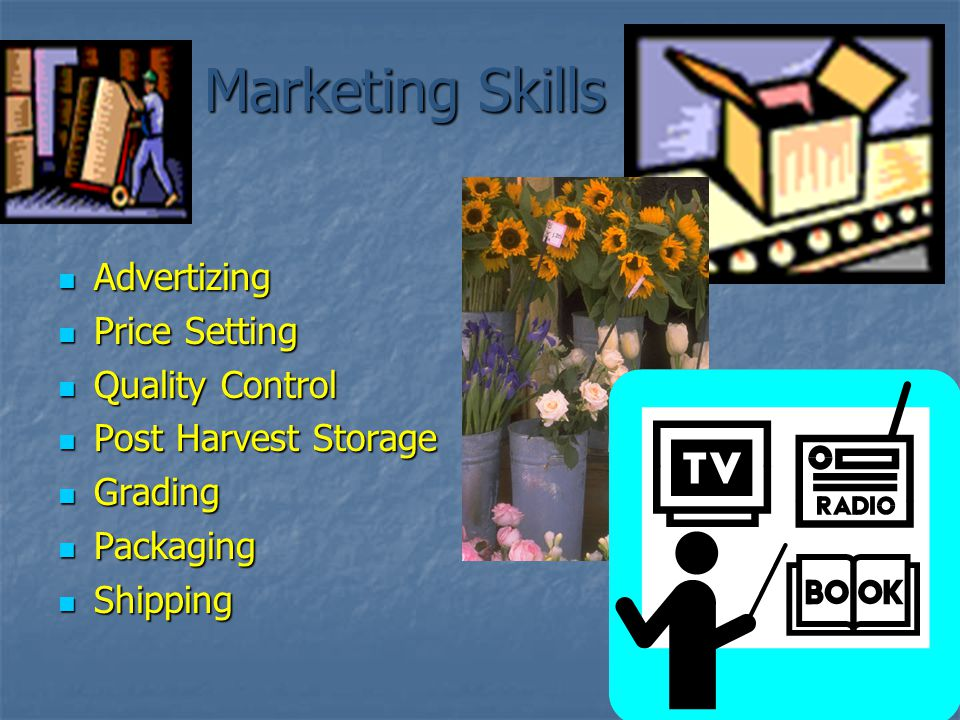 Marketing Skills Advertizing Advertizing Price Setting Price Setting Quality Control Quality Control Post Harvest Storage Post Harvest Storage Grading Grading Packaging Packaging Shipping Shipping