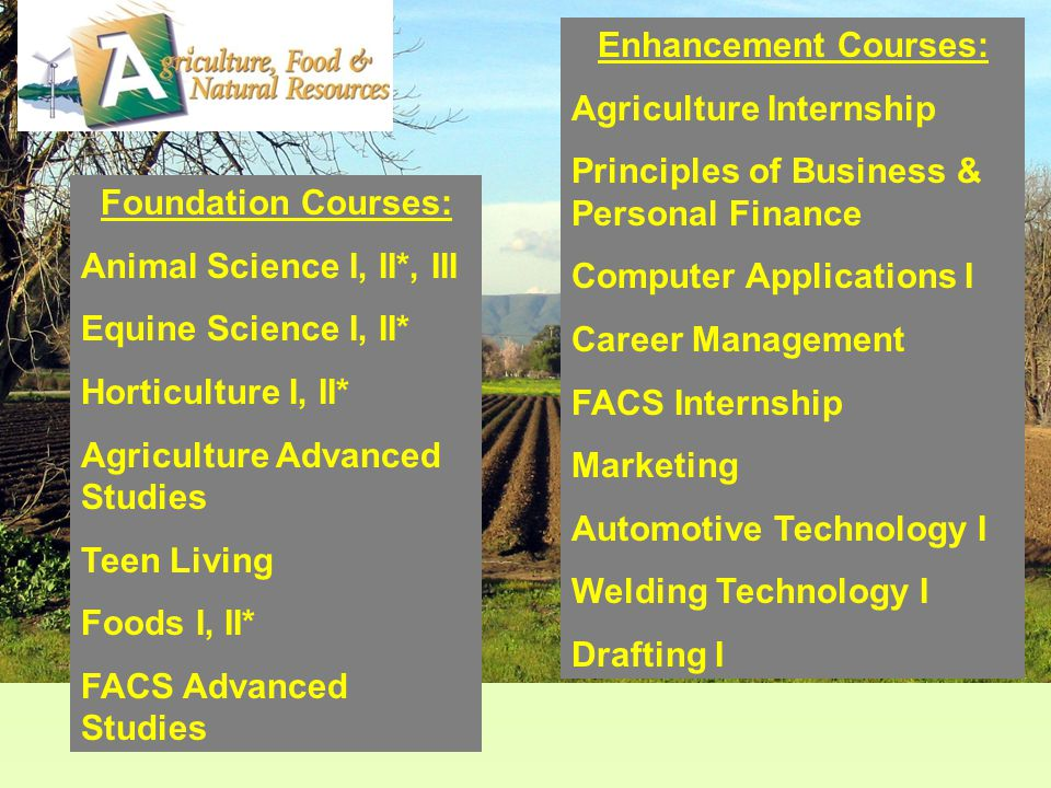 Foundation Courses: Animal Science I, II*, III Equine Science I, II* Horticulture I, II* Agriculture Advanced Studies Teen Living Foods I, II* FACS Advanced Studies Enhancement Courses: Agriculture Internship Principles of Business & Personal Finance Computer Applications I Career Management FACS Internship Marketing Automotive Technology I Welding Technology I Drafting I