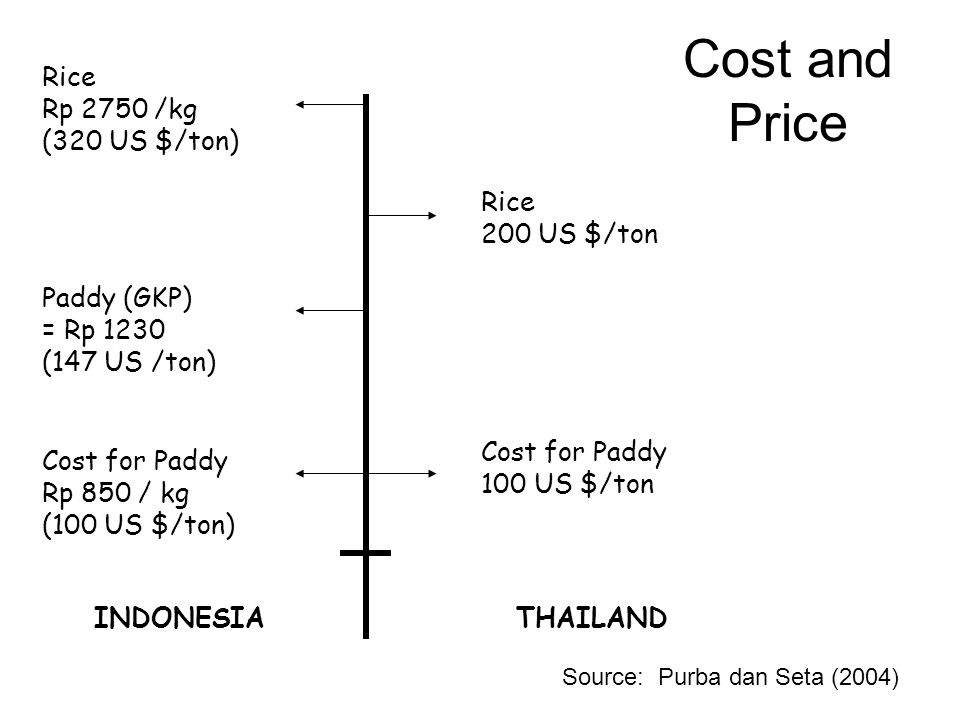Cost and Price Cost for Paddy Rp 850 / kg (100 US $/ton) Paddy (GKP) = Rp 1230 (147 US /ton) Rice Rp 2750 /kg (320 US $/ton) INDONESIATHAILAND Cost for Paddy 100 US $/ton Rice 200 US $/ton Source: Purba dan Seta (2004)