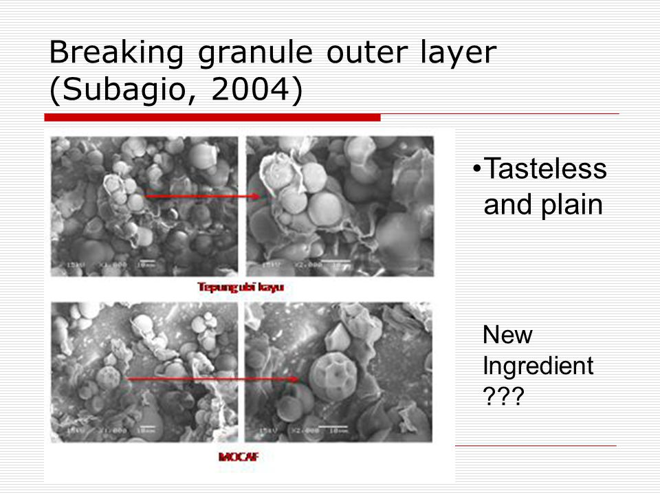 Breaking granule outer layer (Subagio, 2004) Tasteless and plain New Ingredient