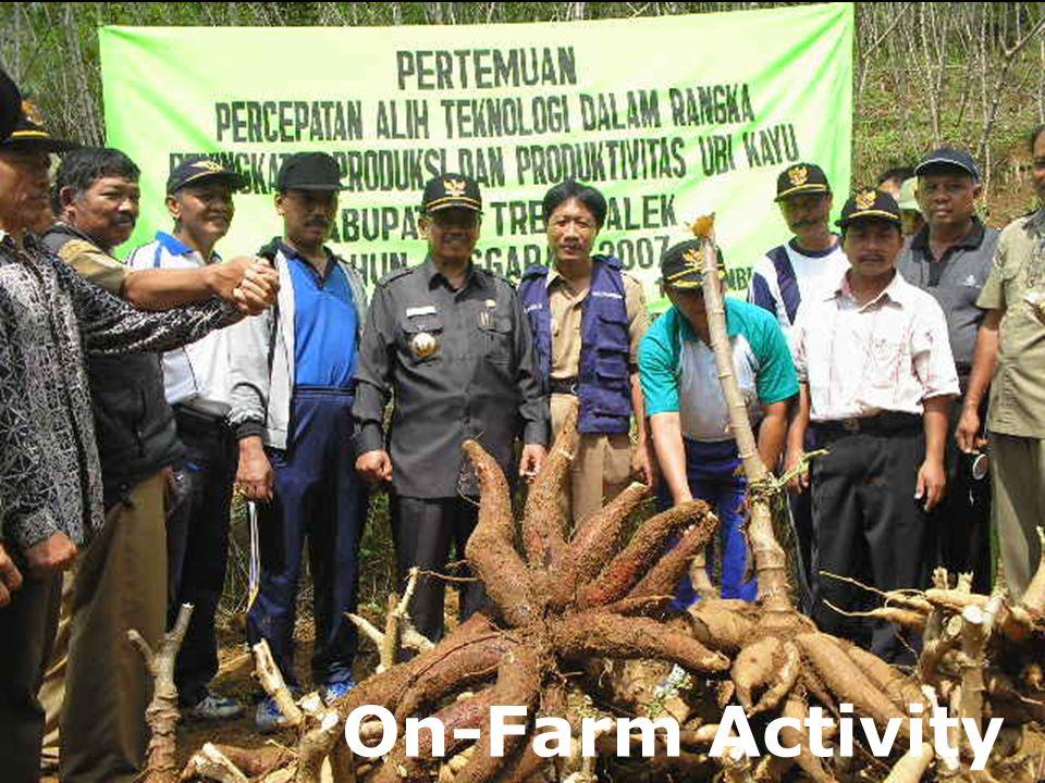34 On-Farm Activity