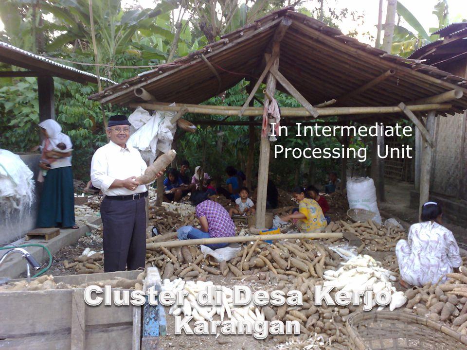 36 In Intermediate Processing Unit