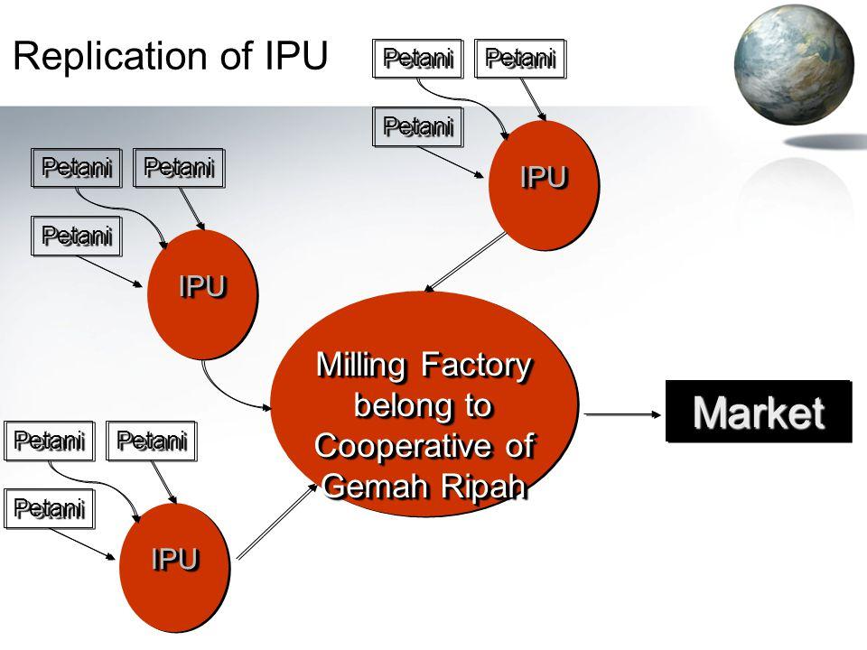 Replication of IPU Milling Factory belong to Cooperative of Gemah Ripah PetaniPetaniPetaniPetani PetaniPetani IPUIPU MarketMarket PetaniPetaniPetaniPetani PetaniPetani IPUIPU PetaniPetaniPetaniPetani PetaniPetani IPUIPU