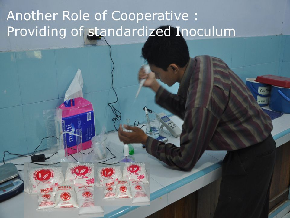 50 Another Role of Cooperative : Providing of standardized Inoculum