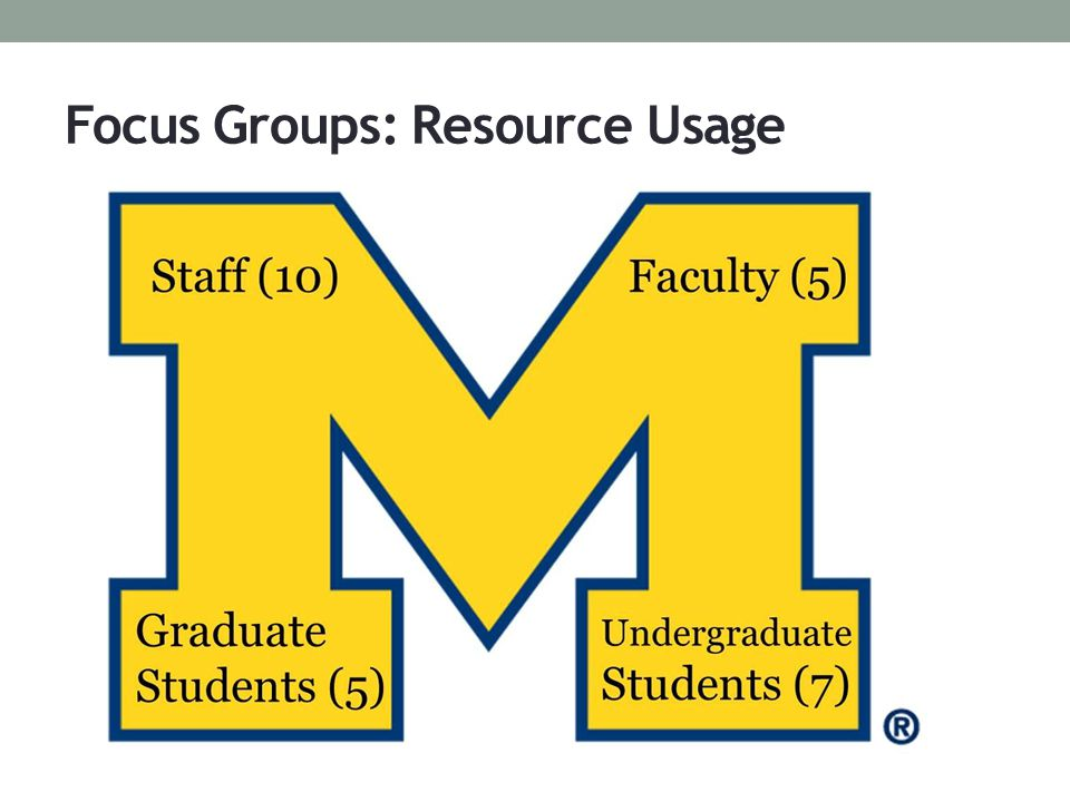 Focus Groups: Resource Usage
