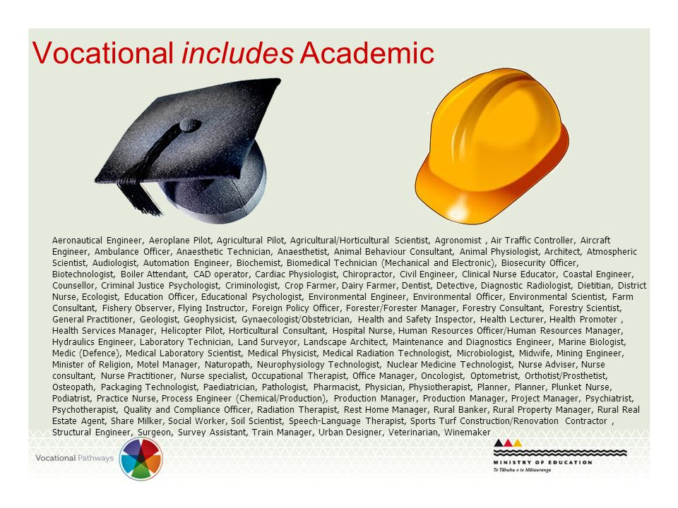 Vocational includes Academic Aeronautical Engineer, Aeroplane Pilot, Agricultural Pilot, Agricultural/Horticultural Scientist, Agronomist, Air Traffic