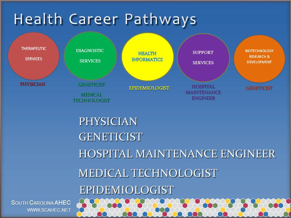 S OUTH C AROLINA AHEC WWW. SCAHEC. NET DIAGNOSTIC SERVICES SUPPORT SERVICES GENETICIST PHYSICIAN HOSPITALMAINTENANCEENGINEER MEDICALTECHNOLOGIST EPIDE