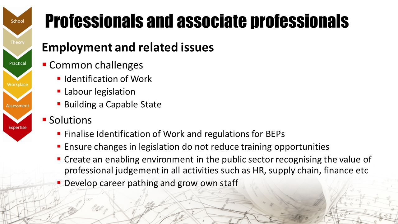 Professionals and associate professionals Employment and related issues  Common challenges  Identification of Work  Labour legislation  Building a