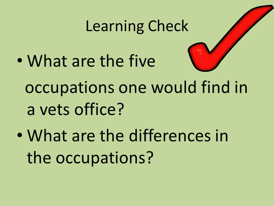 Learning Check What are the five occupations one would find in a vets office.
