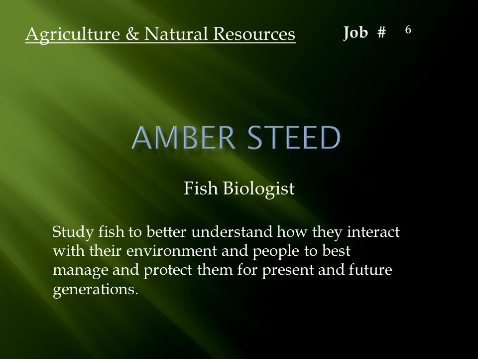 Fish Biologist Agriculture & Natural Resources Study fish to better understand how they interact with their environment and people to best manage and protect them for present and future generations.