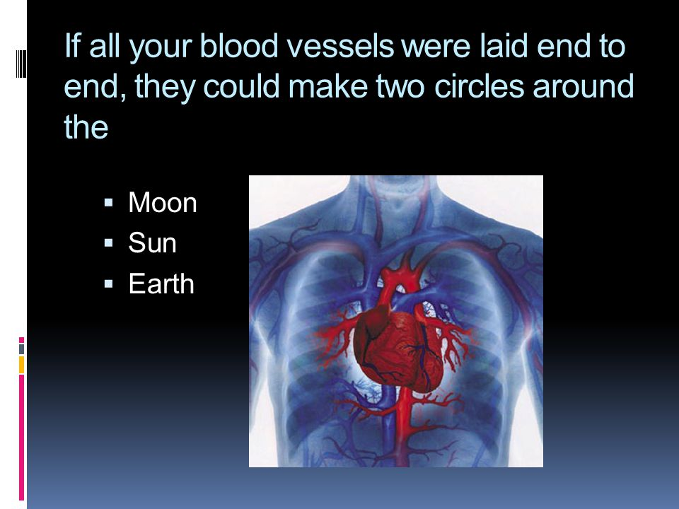 If all your blood vessels were laid end to end, they could make two circles around the  Moon  Sun  Earth