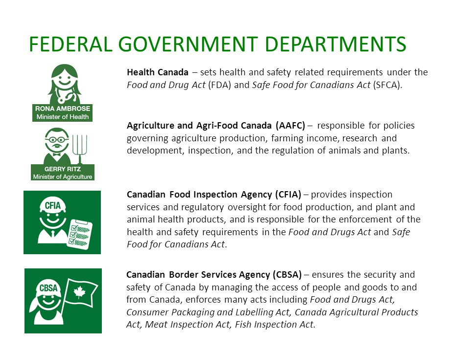 FEDERAL GOVERNMENT DEPARTMENTS Health Canada – sets health and safety related requirements under the Food and Drug Act (FDA) and Safe Food for Canadians Act (SFCA).