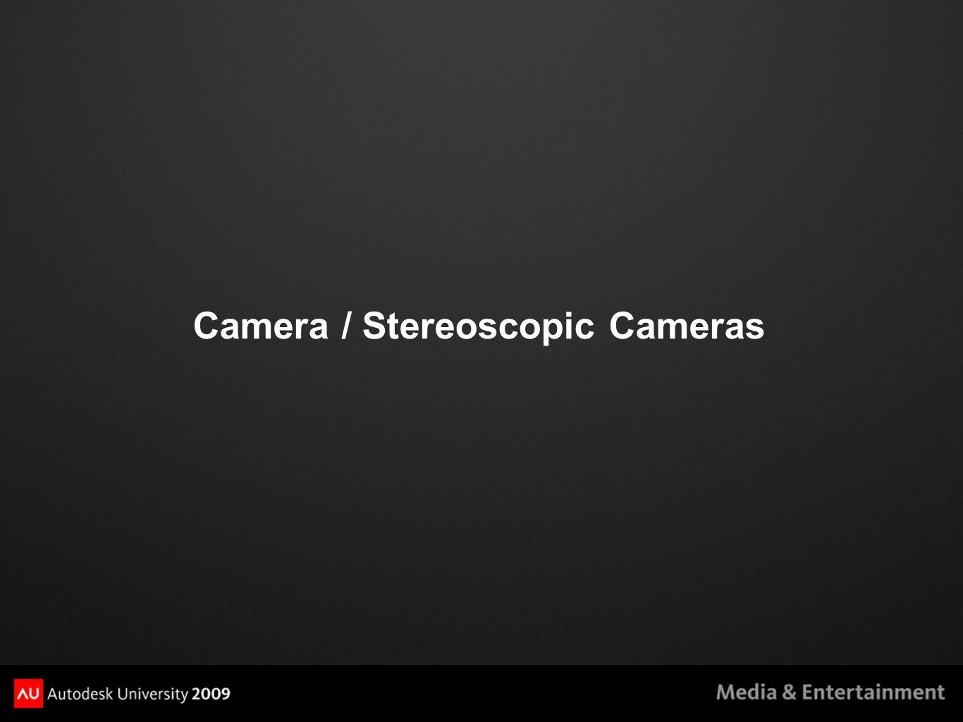 Camera / Stereoscopic Cameras