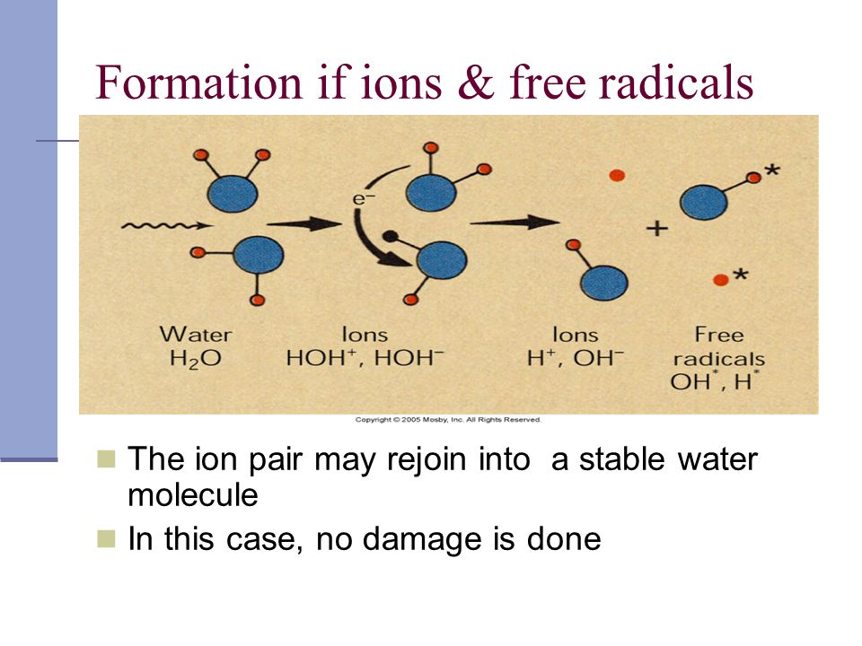 Formation if ions & free radicals The ion pair may rejoin into a stable water molecule In this case, no damage is done