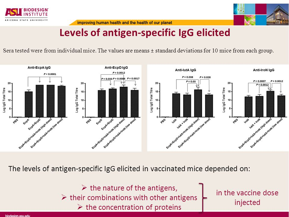 The levels of antigen-specific IgG elicited in vaccinated mice depended on:  the nature of the antigens,  their combinations with other antigens  the concentration of proteins in the vaccine dose injected Levels of antigen-specific IgG elicited Sera tested were from individual mice.