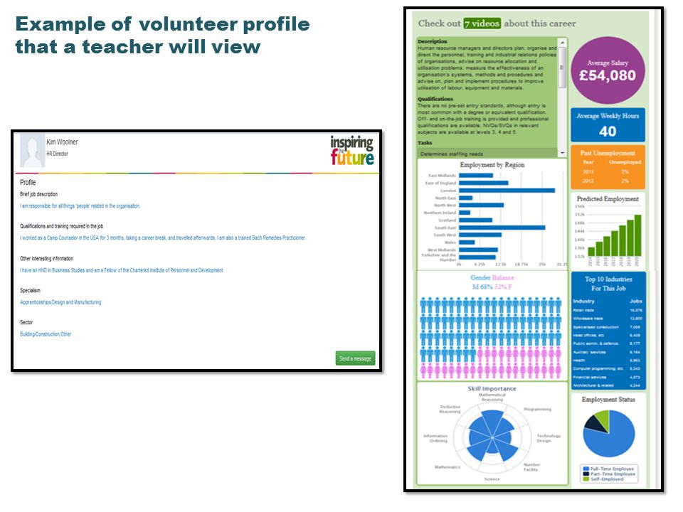 Example of volunteer profile that a teacher will view