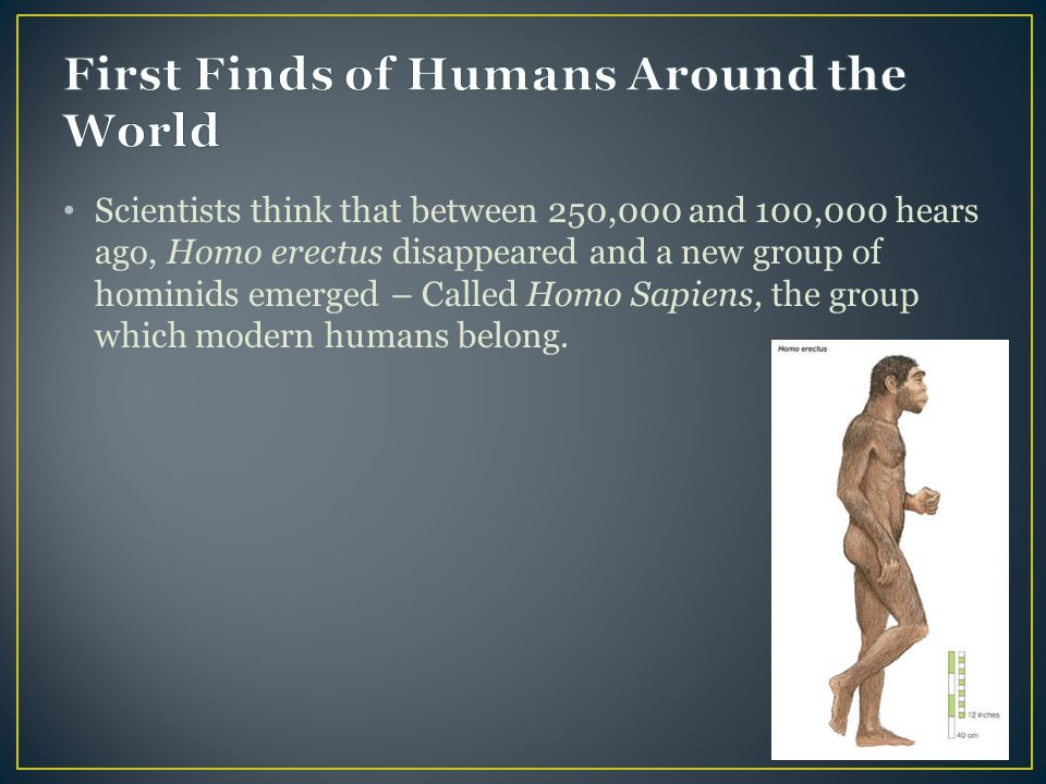 Scientists think that between 250,000 and 100,000 hears ago, Homo erectus disappeared and a new group of hominids emerged – Called Homo Sapiens, the group which modern humans belong.