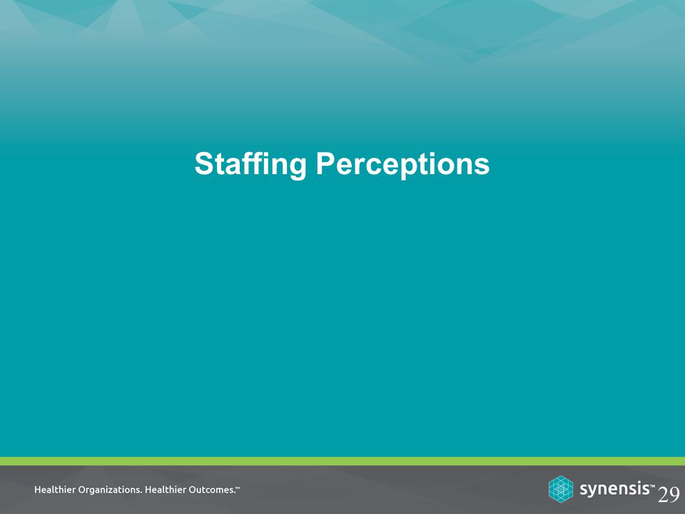 Staffing Perceptions 29