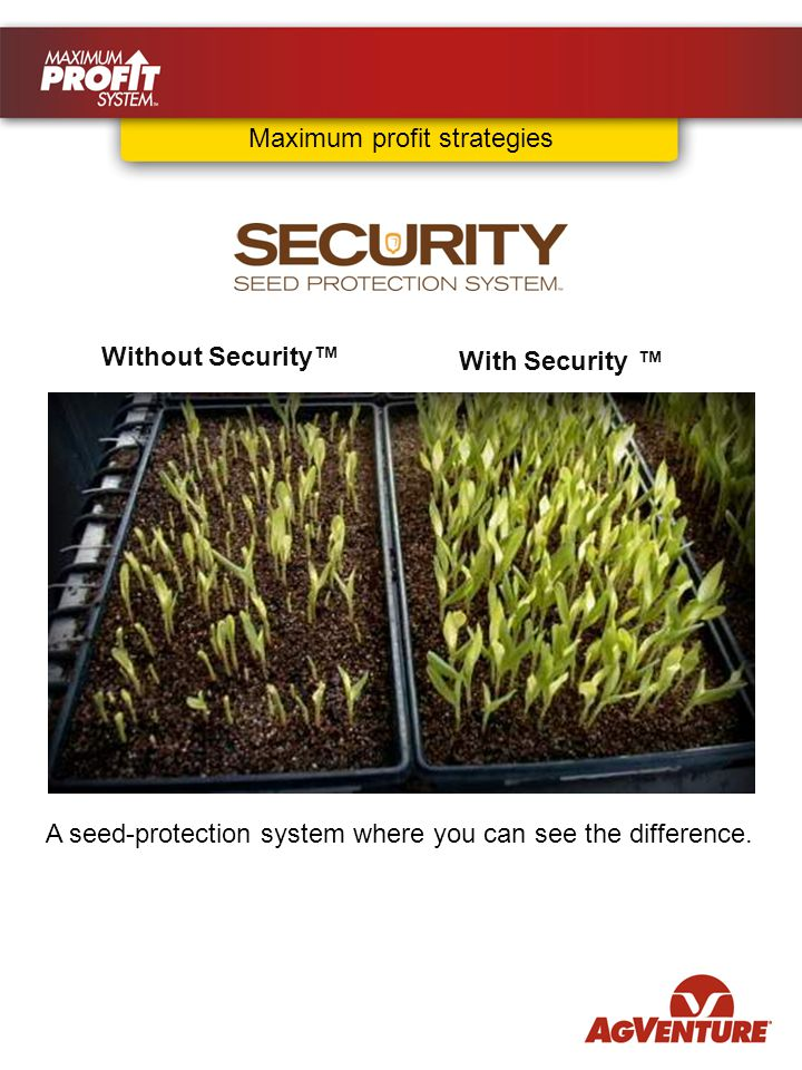 Without Security™ With Security With Security ™ A seed-protection system where you can see the difference.
