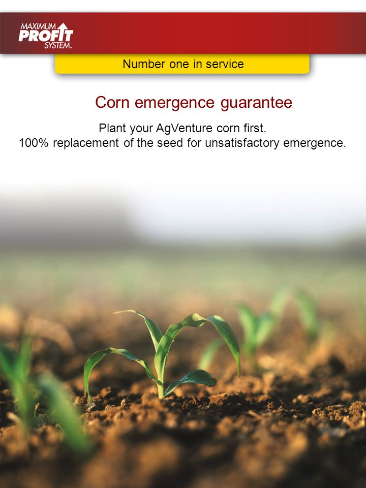 Plant your AgVenture corn first. 100% replacement of the seed for unsatisfactory emergence.