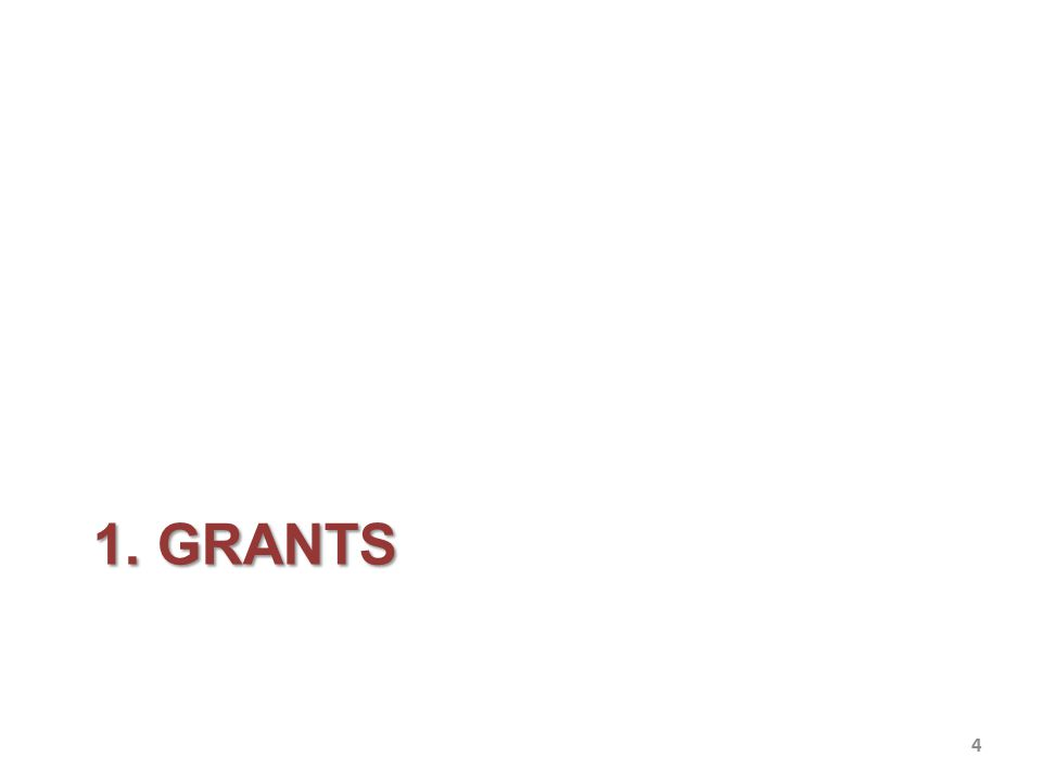 Grants CENTRO FERMI Grants – Fermi Grants – are competitive to European scholarships for prestige and amount.