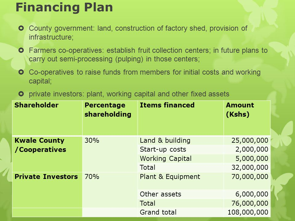Financing Plan  County government: land, construction of factory shed, provision of infrastructure;  Farmers co-operatives: establish fruit collecti