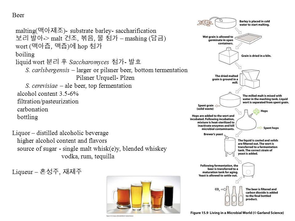 Beer malting( 맥아제조 )- substrate barley- saccharification 보리 발아 -> malt 건조, 볶음, 물 첨가 – mashing ( 담금 ) wort ( 맥아즙, 맥즙 ) 에 hop 첨가 boiling liquid wort 분리 후 Saccharomyces 첨가 - 발효 S.