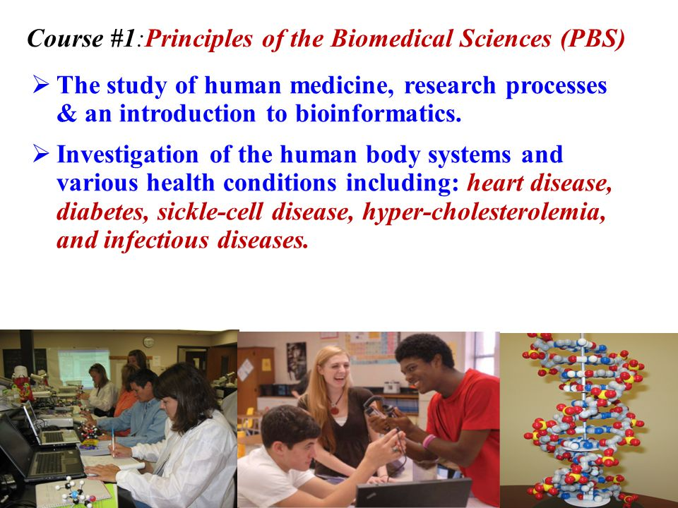 High School Program Biomedical Science Four Course sequence Principles of the Biomedical Sciences Human Body Systems Medical Interventions Biomedical Innovation/Capstone Course